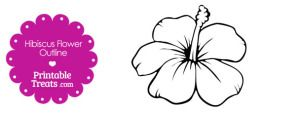 Printable Hibiscus Flower Outline