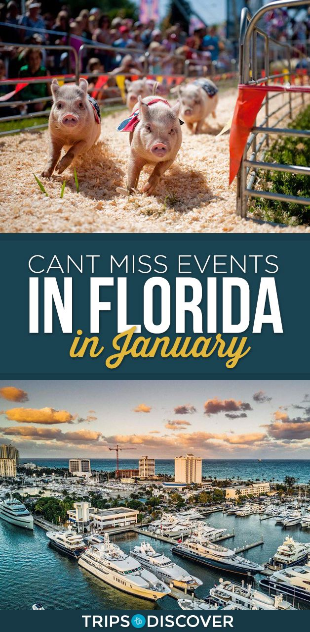 10 Can T Miss Events Happening In Florida This January Florida Events Best Places In Florida Florida Travel