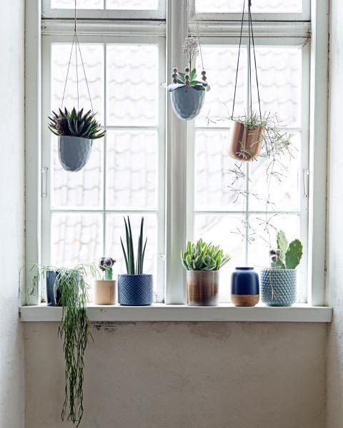 Fenster dekorieren ▷ Dekoideen für das Fenster
