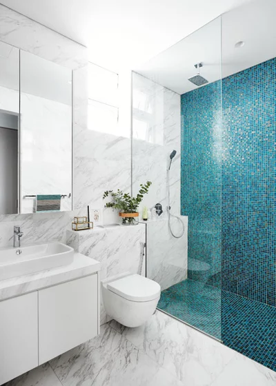 10 Stylish Small Bathrooms With Walk In Showers Timeless