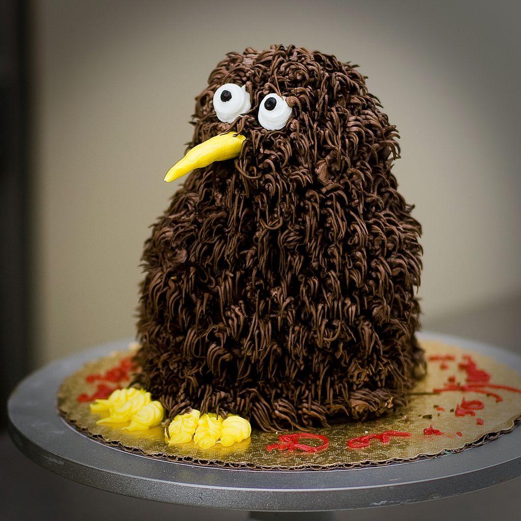 Kiwi Bird cake for my next birthday Kiwi cake, Kiwi bird