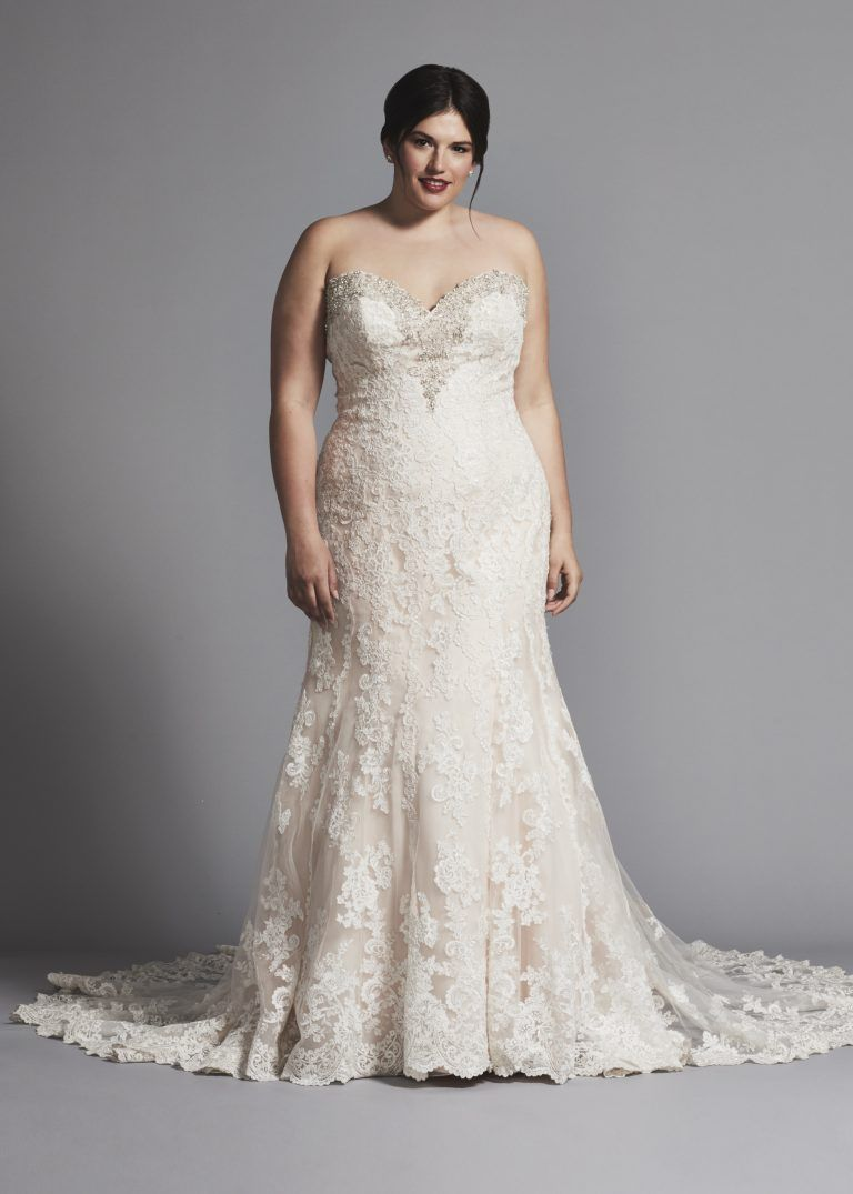 Fit and flare lace wedding dress  Fit And Flare Lace Wedding Dress With Beading At Neckline by