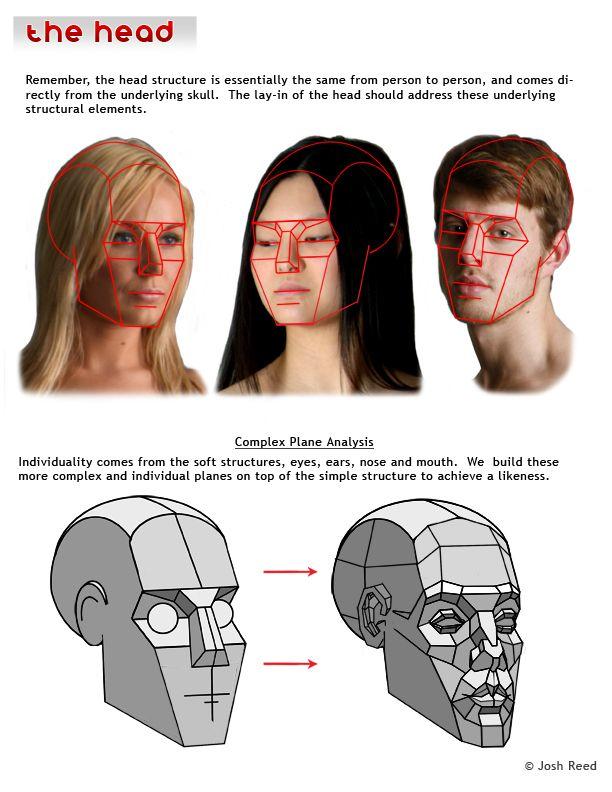 Drawsh: The Head
