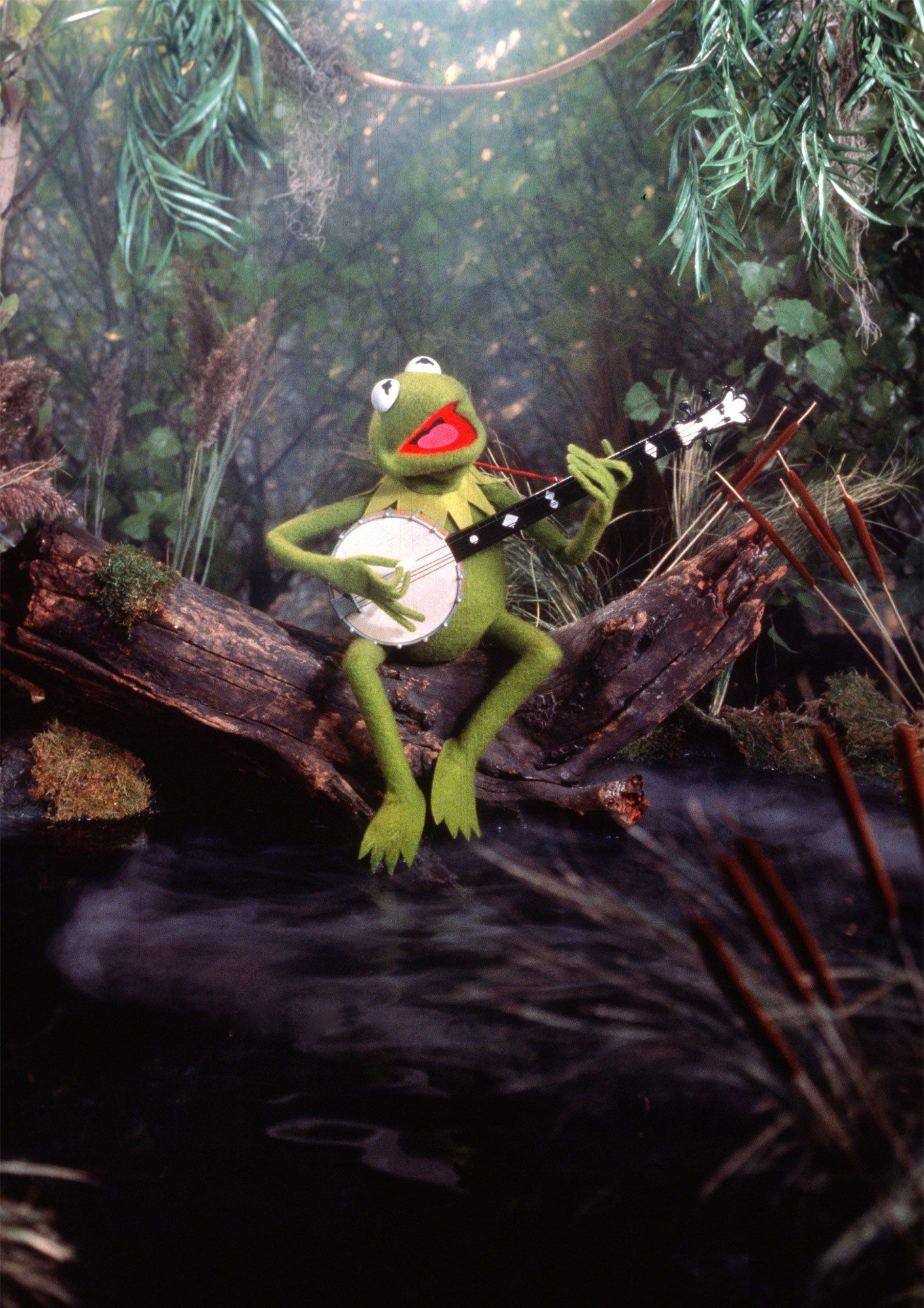 A Frog A Banjo And An Indelible Message Making The Rainbow Connection Rainbow Connection The Muppet Movie Muppets