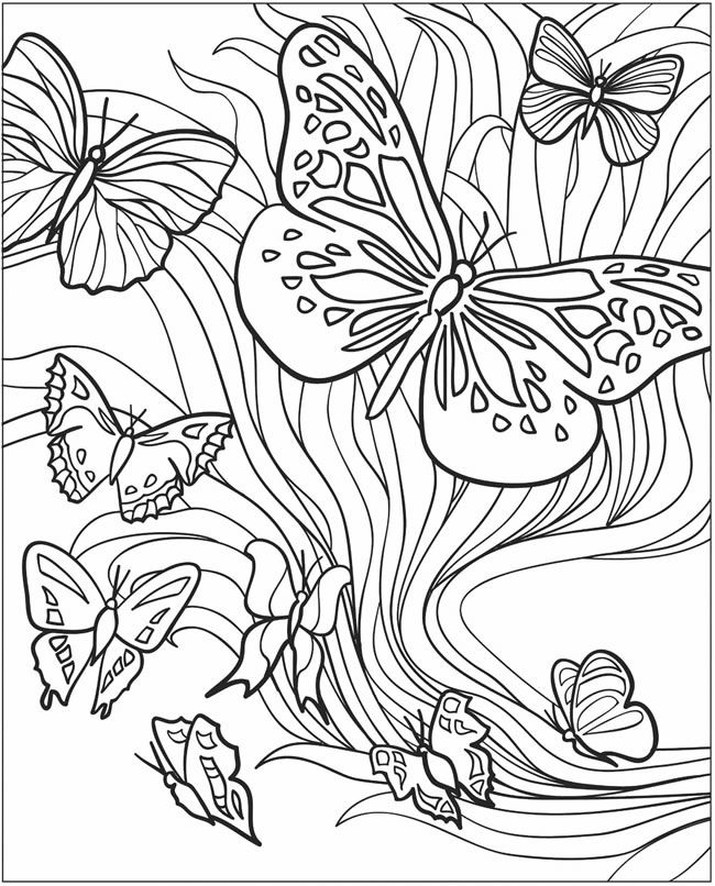 3 D Coloring Book Butterflies Adult Coloring Pages Impressao