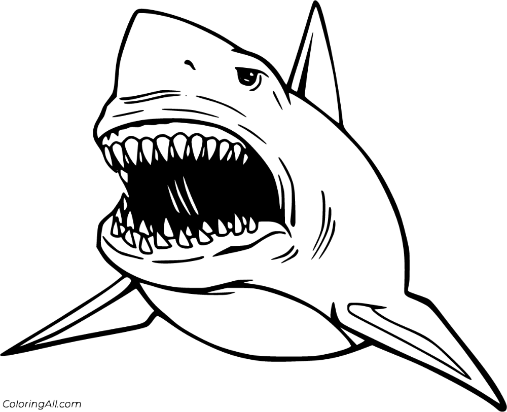 7 free printable Megalodon coloring pages in vector format