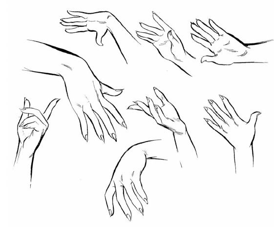 Tutorial Tuesday Drawing The Female Figure Idrawdigital How To Draw Hands Hand Drawing Reference Human Figure Drawing