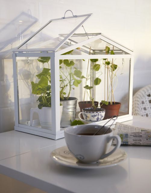 pin von things auf things i heart ikea gew chshaus. Black Bedroom Furniture Sets. Home Design Ideas