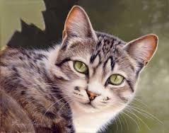 """Résultat de recherche d'images pour """"chat peinture"""""""