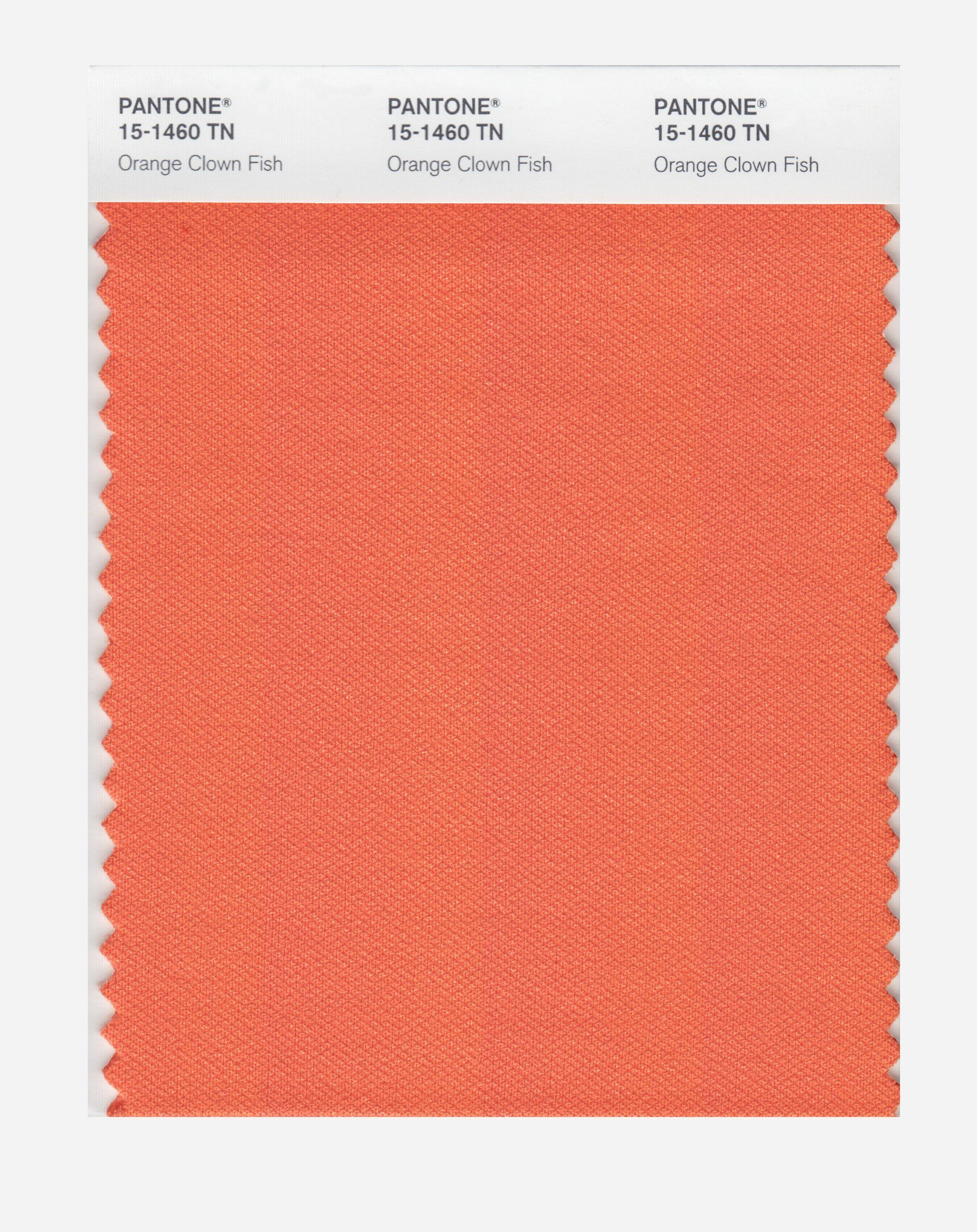Pantone 15-1460 Nylon Brights Color Swatch Card - House Paint ...