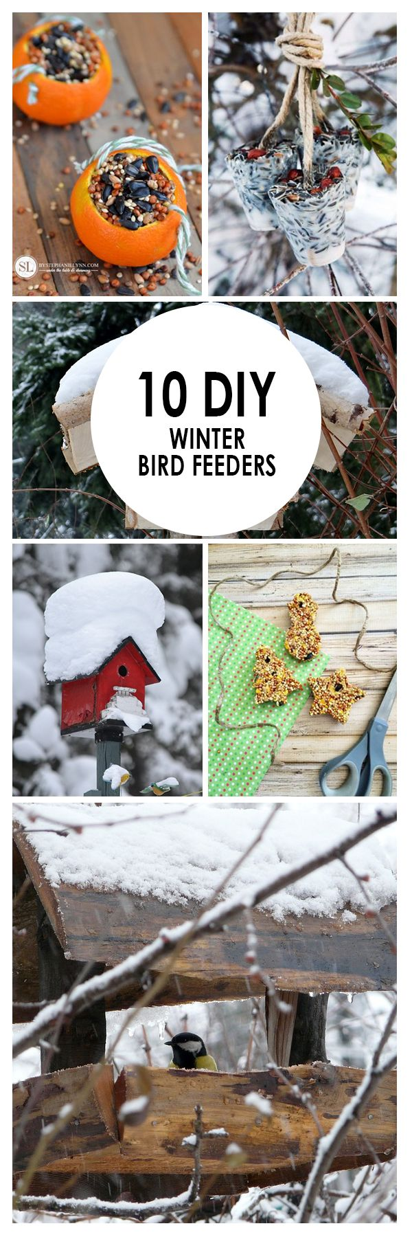 Winter Birdfeeders Winter Gardening Winter Gardening Tips