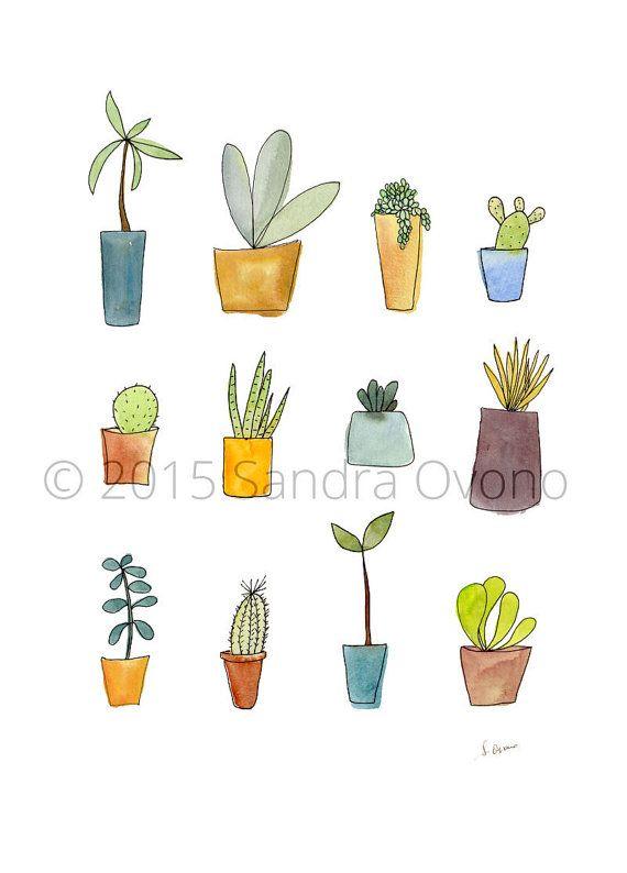 cactus et succulentes reproduction de dessins par. Black Bedroom Furniture Sets. Home Design Ideas