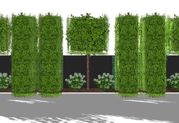 Pin op Garden privacy