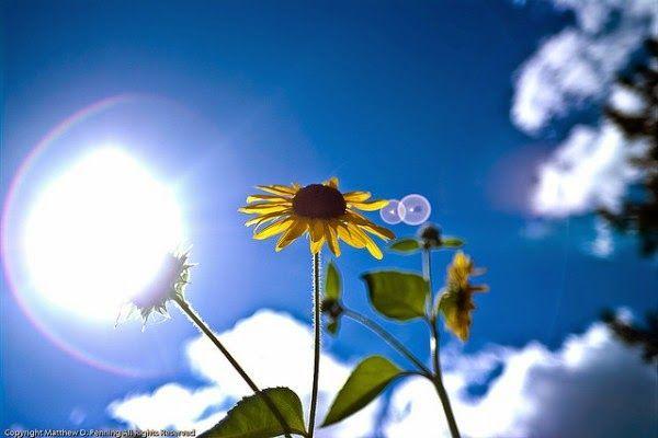 EPIRUS TV NEWS: Αίθριος αναμένεται ο καιρός για σήμερα Παρασκευή.