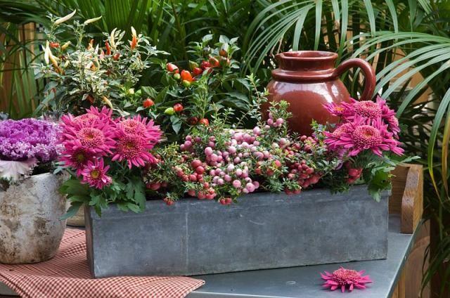 jardini re d 39 automne pour voir la vie en rose maison jardin pinterest jardins. Black Bedroom Furniture Sets. Home Design Ideas