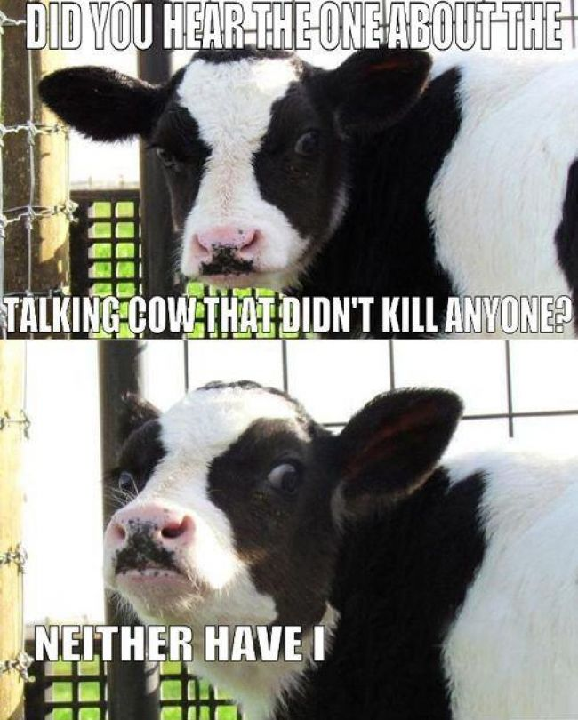 Beware of COW