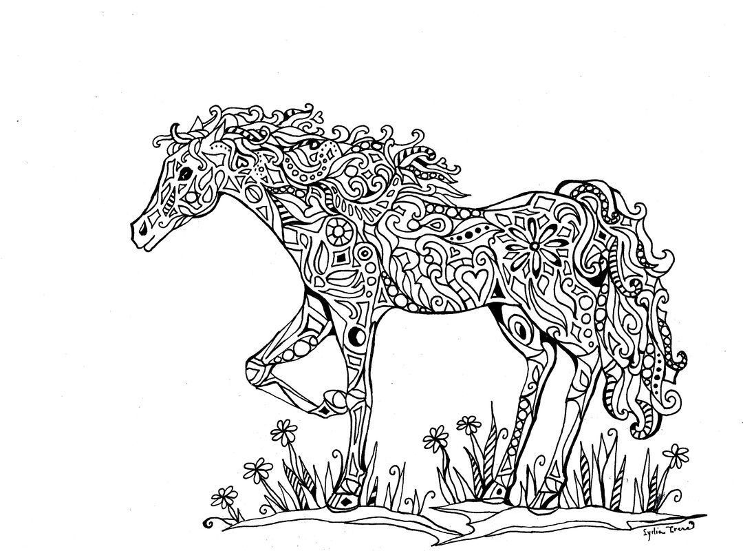 Coloring book pages horses