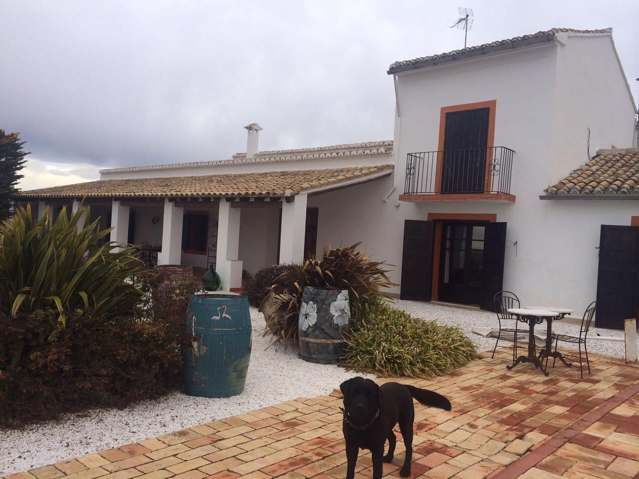 Terraza de Bodega Chozas Carrascal. Muebles de forja de www.fustaiferro.com  https://fustaiferro.wordpress.com/ #bodega #terraza #vino #valencia #fustaiferro #chozascarrascal