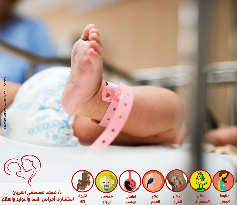 تعليمات ما بعد الولادة أفضل دكتور نساء وتوليد في الاسكندرية Best Wordpress Themes Wordpress Theme Theme