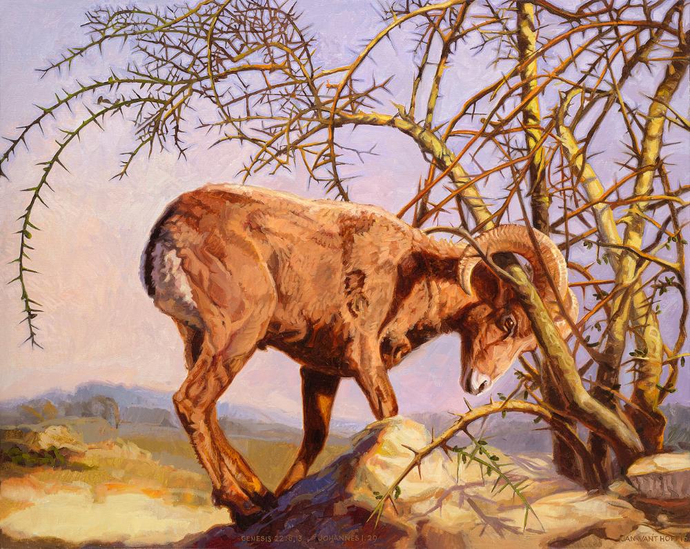 Genesis 22 vers 13. De ram op de berg Moria. | Genesis bible, Bible  pictures, Biblical art