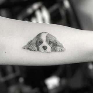 Cavalier King Charles Spaniel Tattoos Ideas Dog Tattoos Dog Portrait Tattoo Dog Tattoo