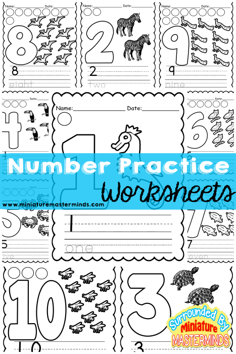 Number and Counting Worksheets Printer Friendly Free Printable ...