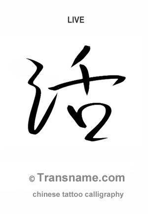 Transname Chinese Tattoo Translation And Calligraphy