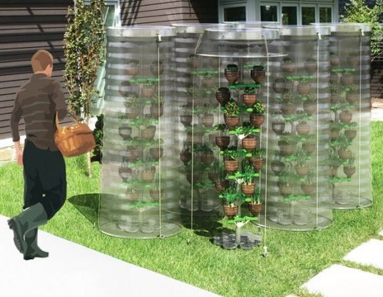 Rainwater harvesting pet tree system makes urban gardening for Decor 718 container