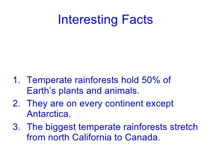 rainforest fun facts - Google Search | Jenz Rainforest | Pinterest ...