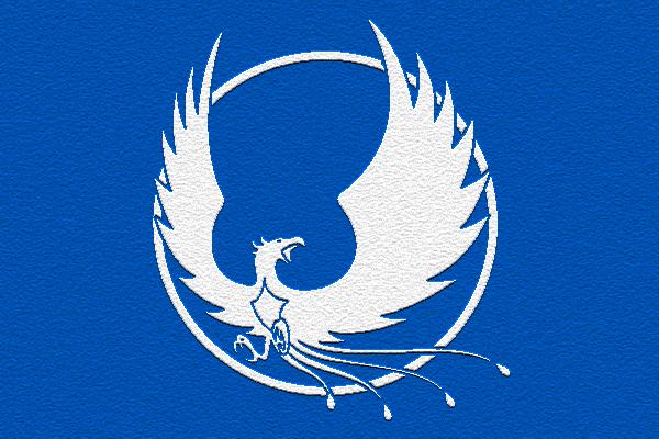 cool flag designs - Google Search | Cartoony spaceship and ...  cool flag desig...
