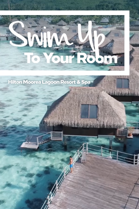 Book now and you'll be swimming up to your room in no time.