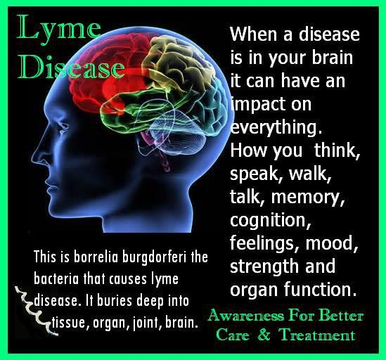 A few of the body systems affected by Lyme disease and some symptoms