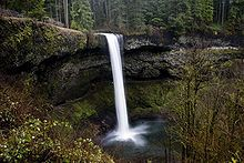 Silver Falls State Park: Best. State. Park. Ever.