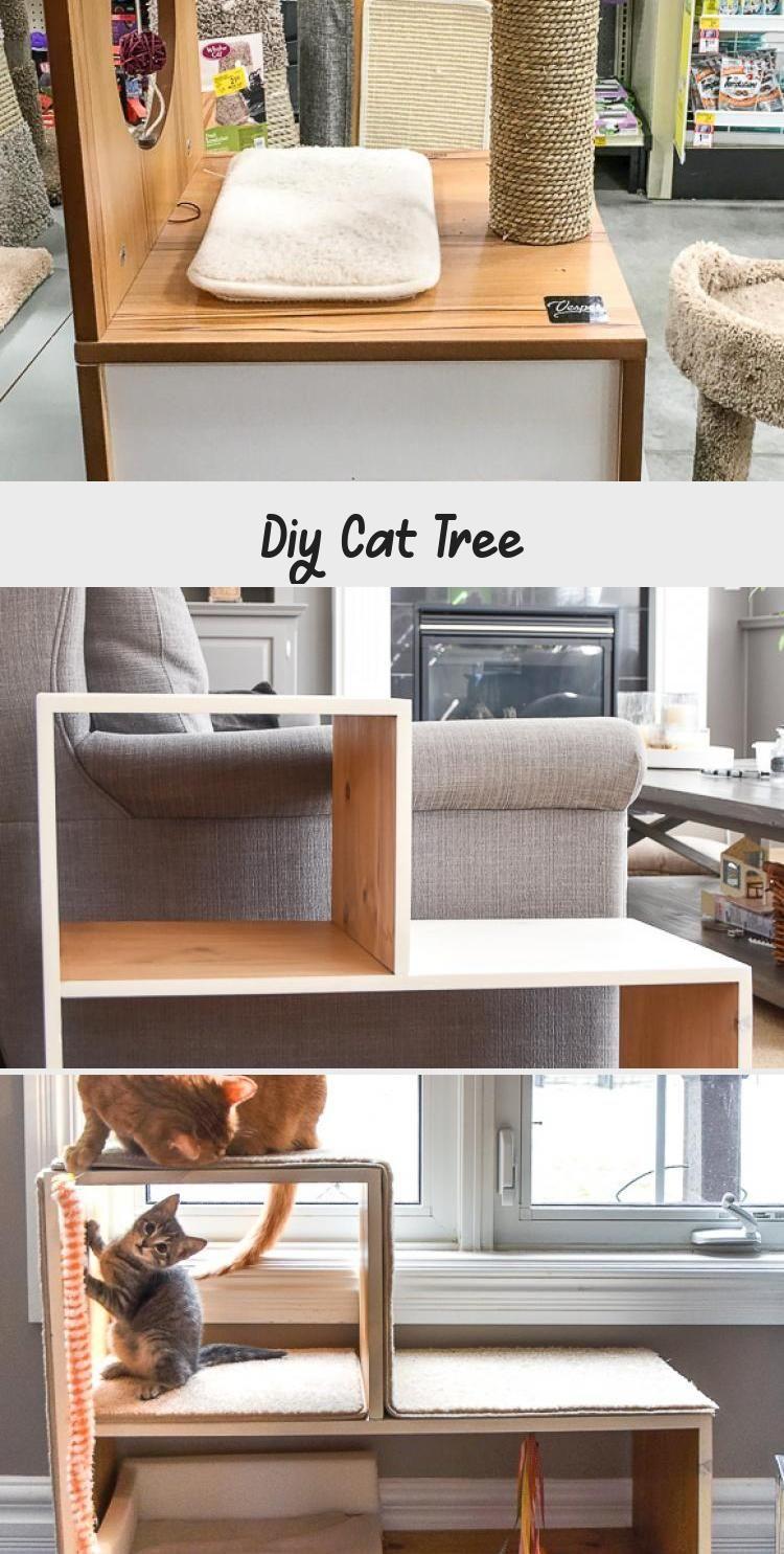 Diy Cat Tree In 2020 Diy Cat Tree Cat Diy Diy Cat Scratching Post
