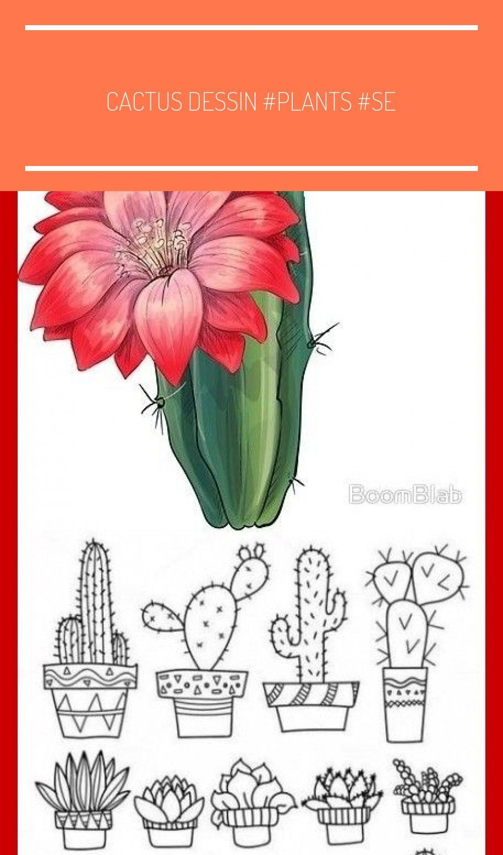 Photo of Cactus drawing #plants #seo #trending. cactus art, cactus plants, cactus drawing, …