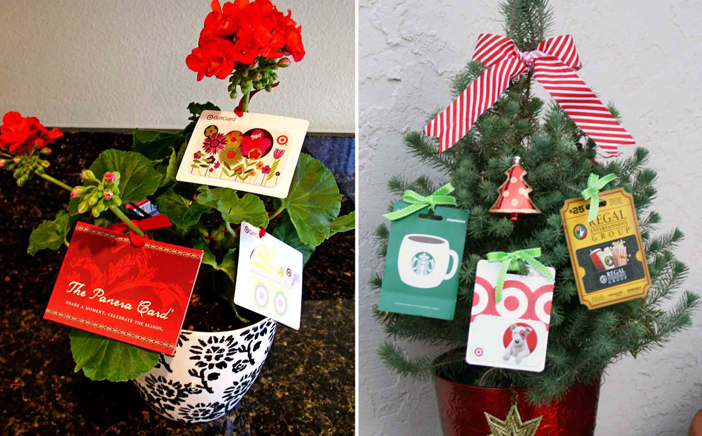 Gift card treecorate a small christmas tree by hanging gift gift card treecorate a small christmas tree by hanging gift cards negle Gallery