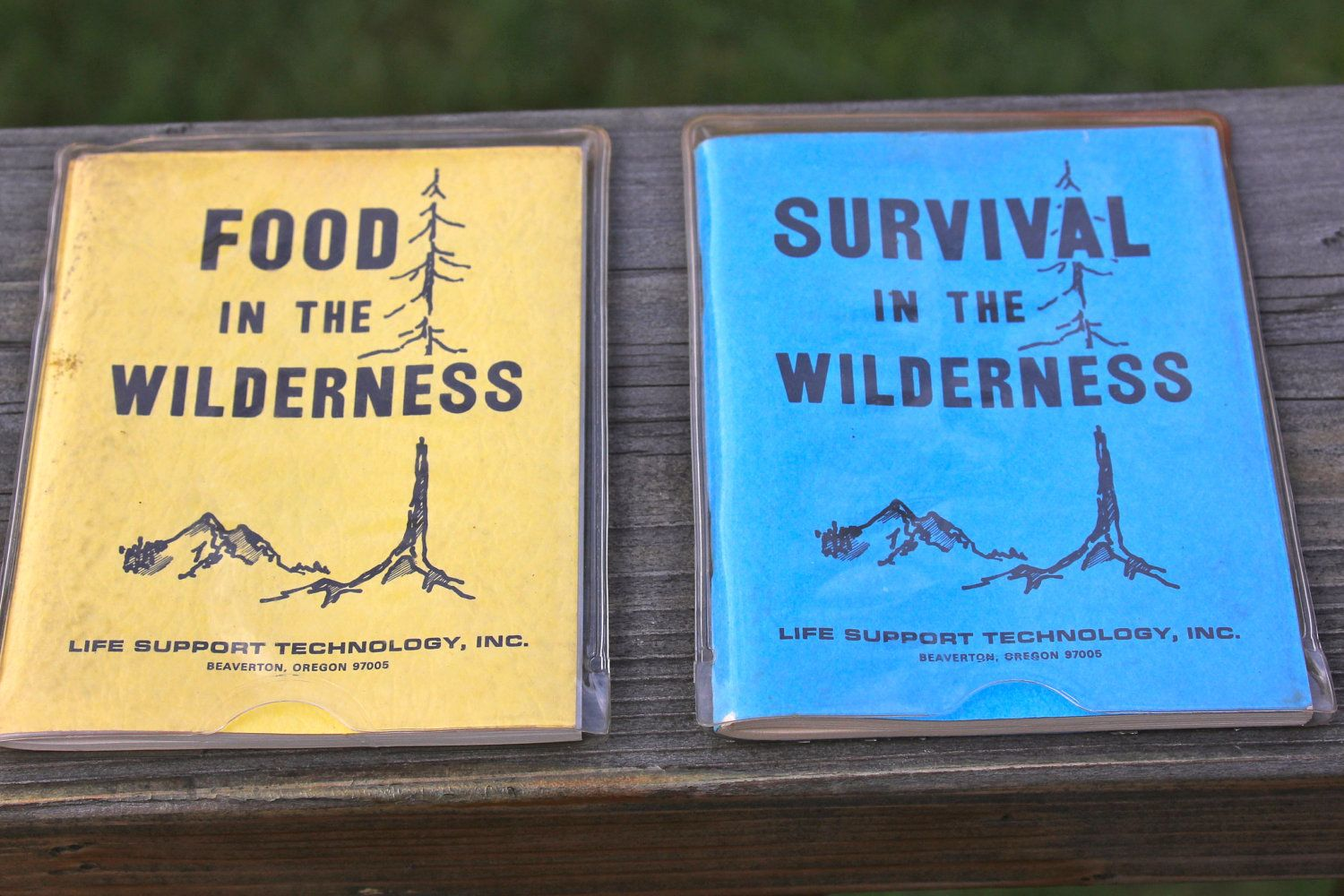 Vintage field guide google search book pinterest wilderness vintage field guide google search fandeluxe Gallery