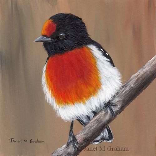 "Daily Paintworks - ""Red Capped Robin No 2"" - Original Fine Art for Sale - © Janet Graham"