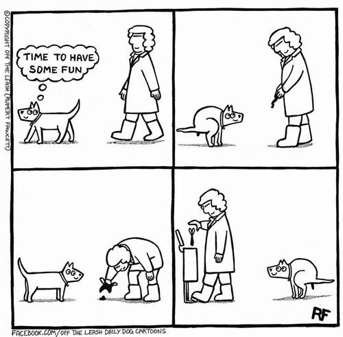 Amazing Comic Captures The Laughable Struggle Of Being A Dog