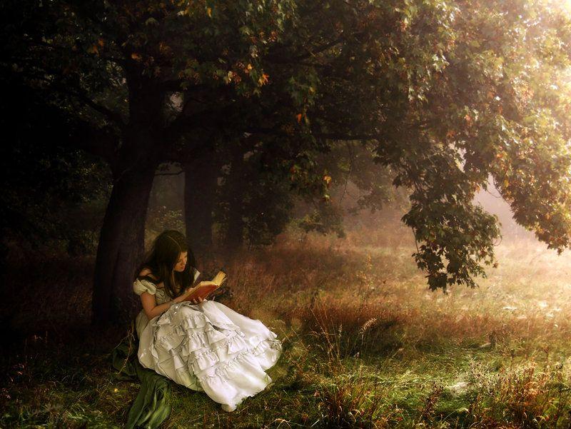 Reading In A White Dress Art Fantasy Artwork Artwork