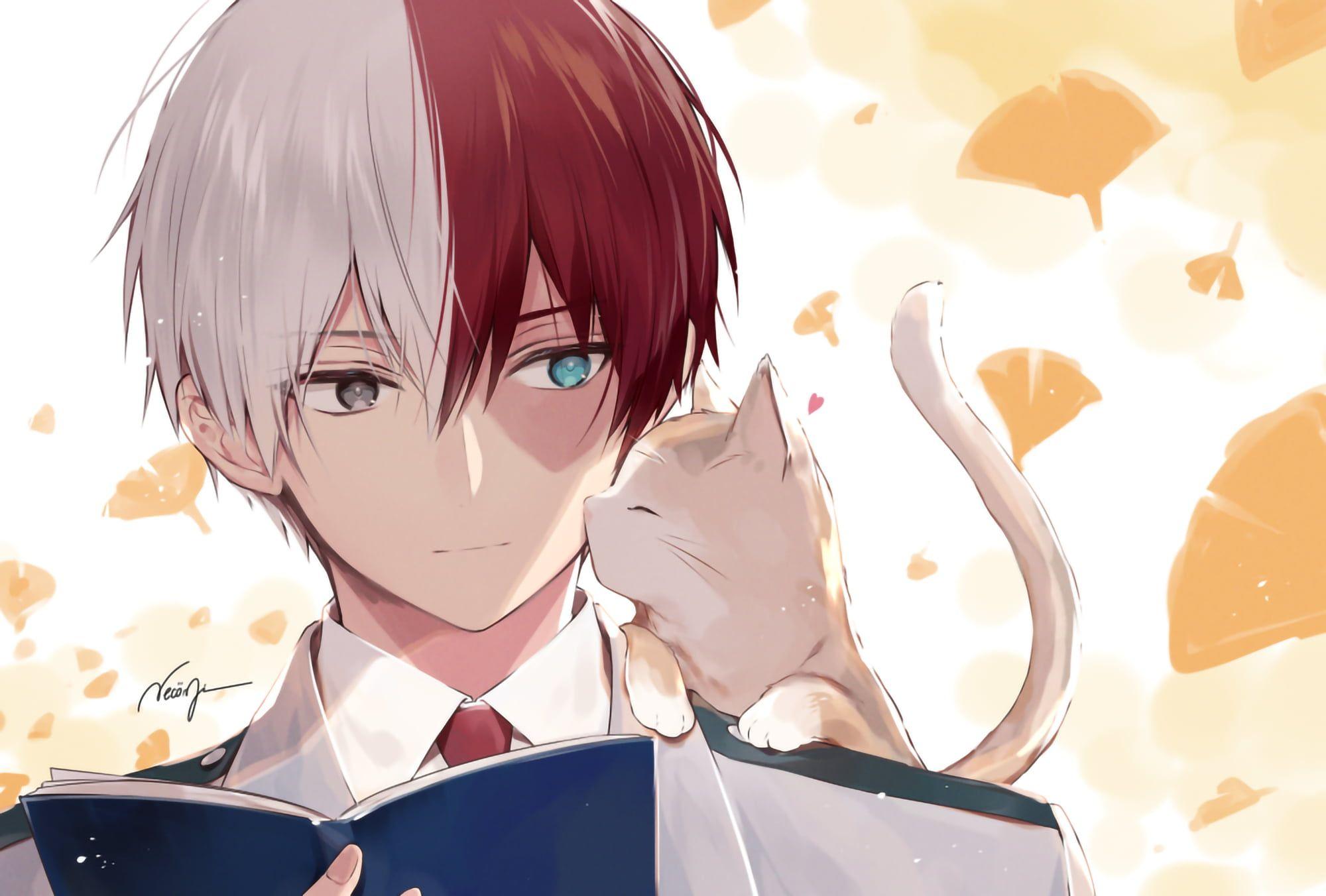 Shoto Todoroki In 2020 My Hero Academia Episodes Cute Anime Guys Hero
