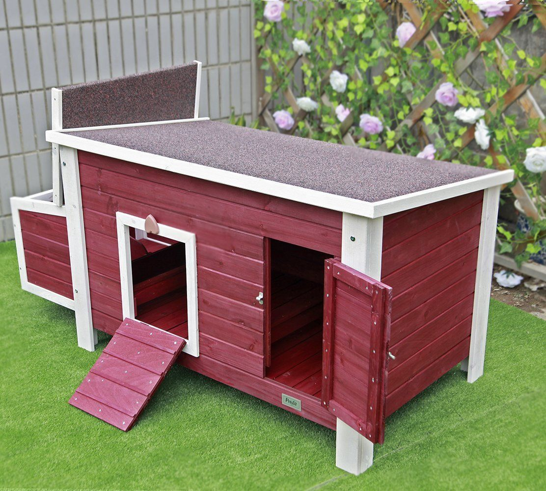 Waterproof Paint Endothermic Roof Perfect Adapt To Different Weather Conditions The Side Of Chicken C Chicken Barn Building A Chicken Coop Diy Chicken Coop
