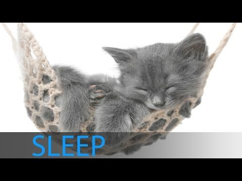 8 Hour Relaxing Sleep Music Deep Sleep, Delta Waves, Soft