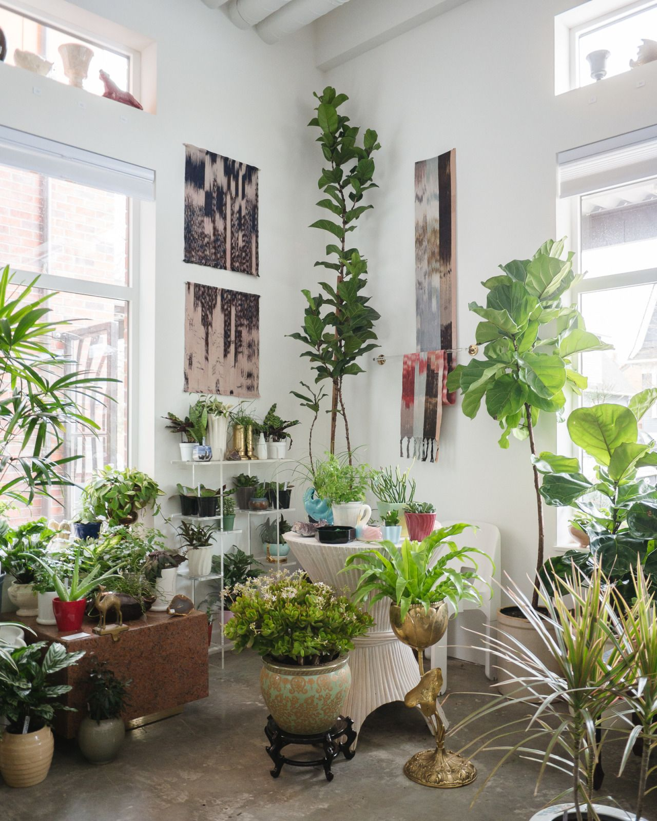 Homesteadseattle Last Day Of Our Plant Pop Up At The
