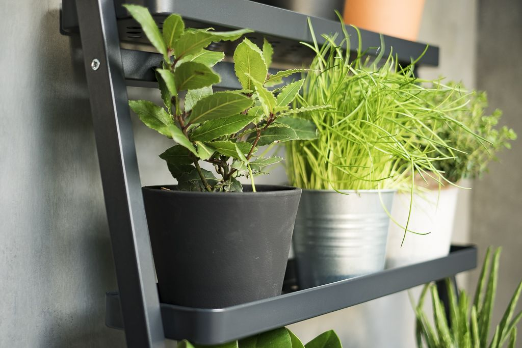 Tuinieren Op Balkon : SalladskÅl plantenstandaard ikea ikeanl opbergen balkon