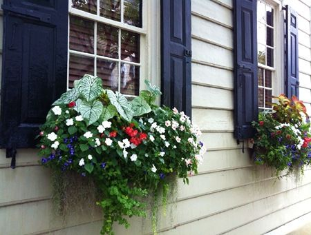 Country Window Boxes | It's been more than two years ago since I first wrote about the book ...