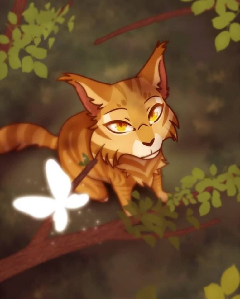 Mothwing, RiverClan Medicine Cat