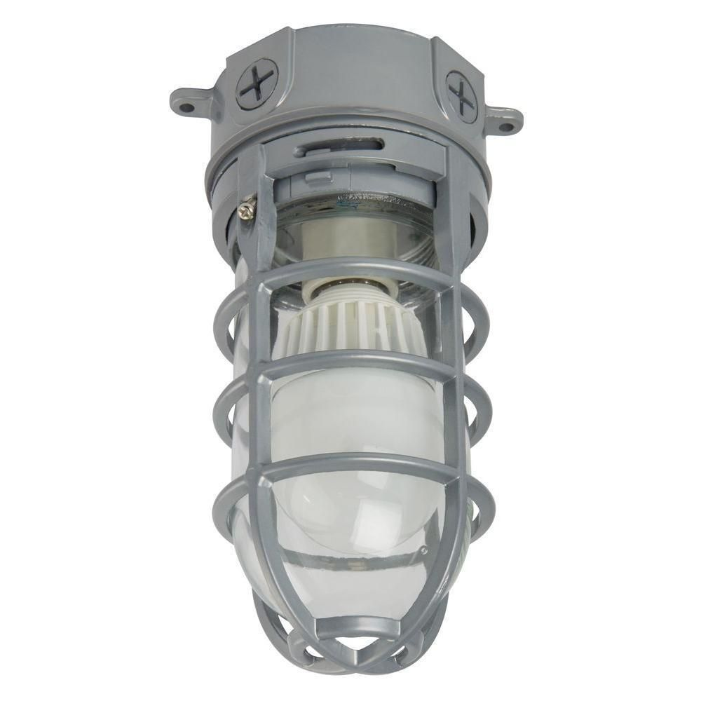 Lithonia Lighting Ceiling-Mount 1-light Outdoor Hanging LED Vapor Tight