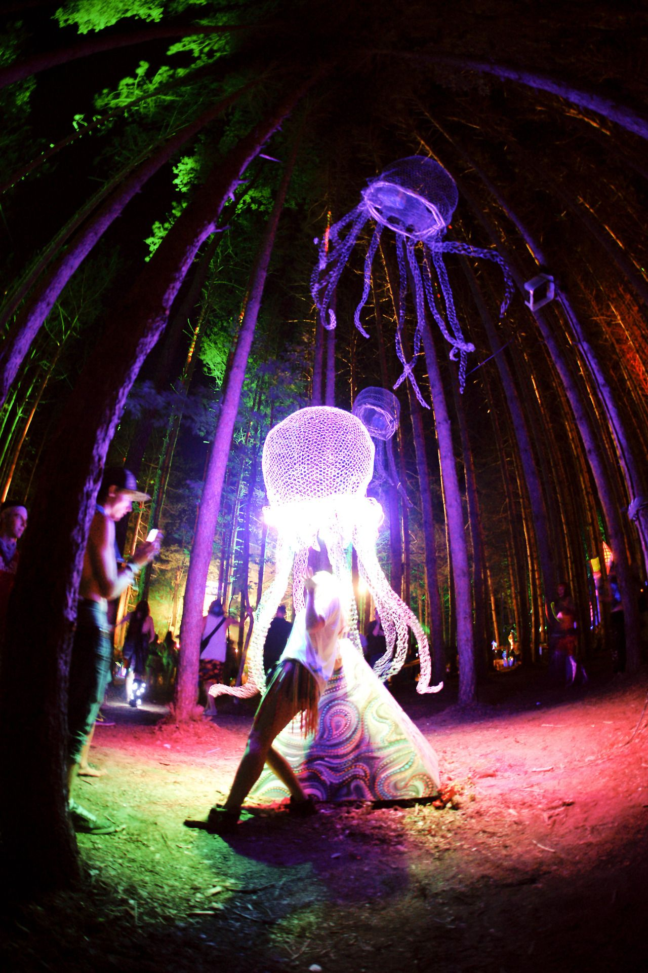 Electric Forest | Music Festivals | Pinterest | Electric ...