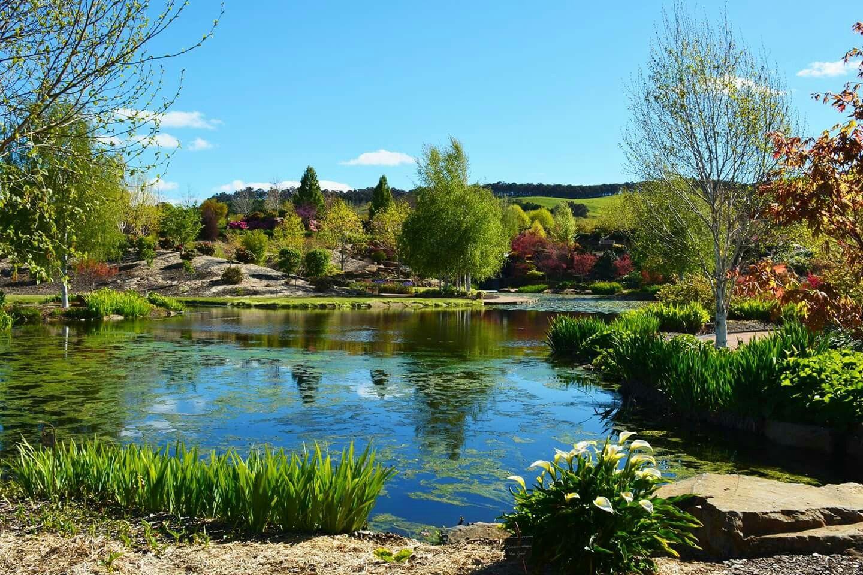 Mayfield Gardens, Oberon.. Paisajes